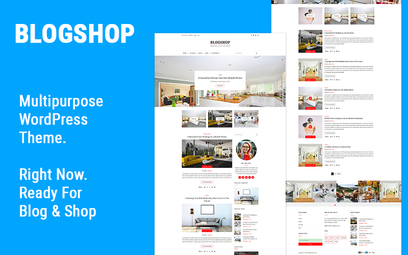 WordPress theme for blogs and Ecommerce